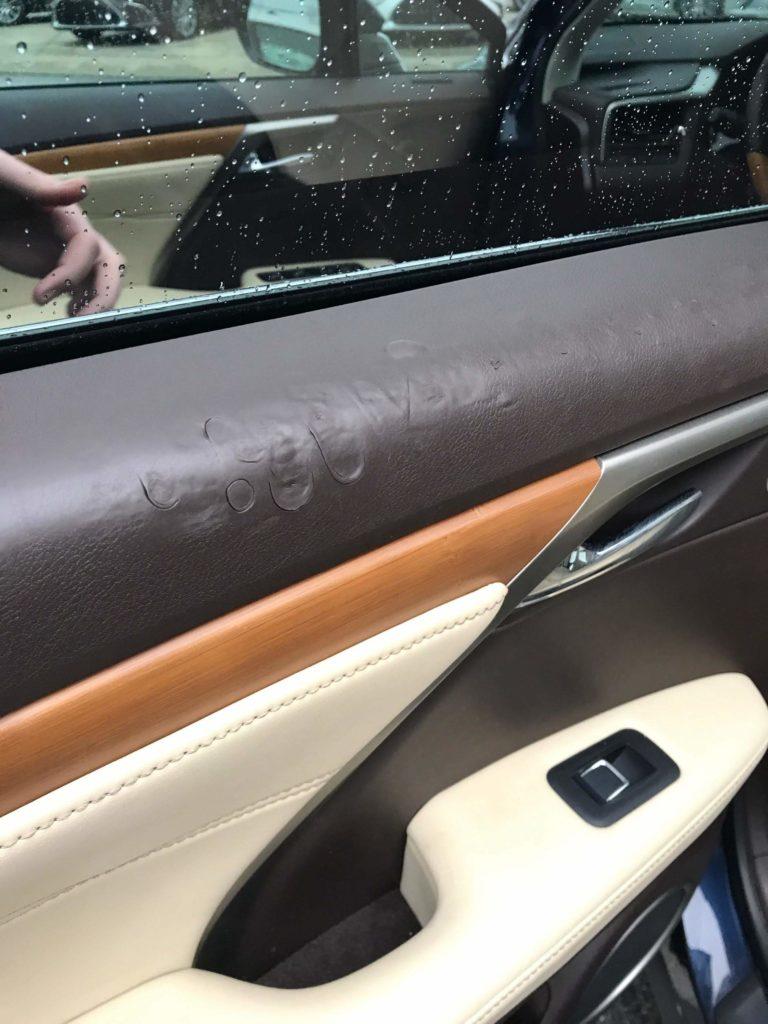 2016 Lexus RX350 Door Panel Repair – Before and After
